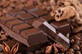 Chocolate and spices — Стоковое фото
