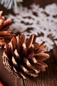 Pinhas de natal — Foto Stock