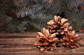 圣诞松果 — 图库照片