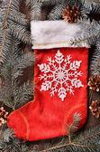Noel çorap — Stok fotoğraf