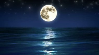 Sea and moon. Night sky. Looped animation. HD 1080. — Video Stock