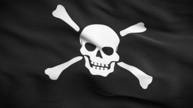 Jolly Roger Flag HD. Looped — Stock Video
