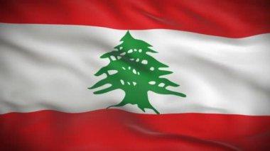 Flag of Lebanon — Stock Video