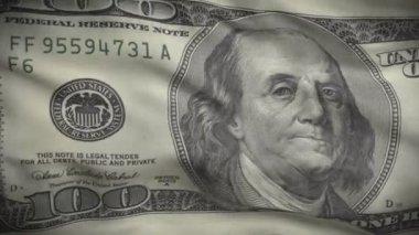 One Hundred Dollars Flag — Stock Video