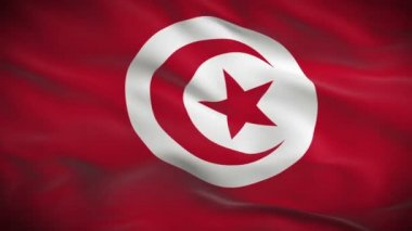 Flag of Tunisia — Stock Video