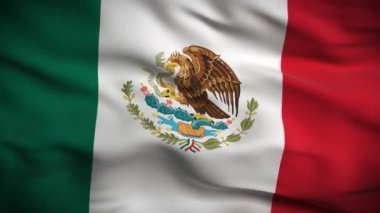 Flag of Mexico — Stock Video