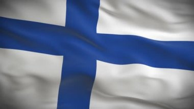 Flag of Finland — Stock Video