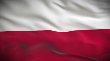 Flag of Poland — Stock Video