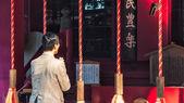 Hakone Shrine — Foto de Stock