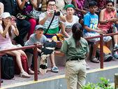 Jurong Bird Show — Stock Photo