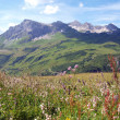 Stock Photo: Alps in Vorarlberg
