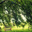 Wooden swing for children — Foto Stock