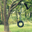 Tire swings for children — Stock Photo #30515885