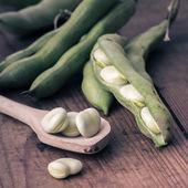 用勺子木桌上的蚕豆 — 图库照片