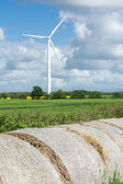 Windfarm — Stock Photo