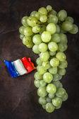 Wet grape — Stock Photo