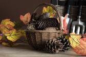 Garden tools for autumn — Stock Photo