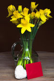 Lent lily daffodil in a glass vase — Stock Photo
