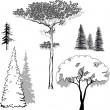 Vector illustration set of trees — Stock Vector