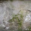 Dirty Wall Texture — Stock Photo