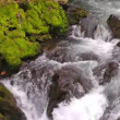 Stock Video: Waterfall