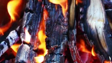 Wood and Coal Fire — Stock Video