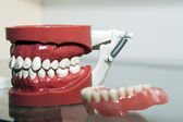 Zirconium Porcelain Tooth plate in Dentist Store — Stock Photo