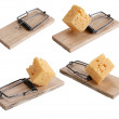 Stock Photo: Mousetrap baited with cheese
