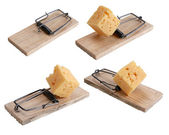 Mousetrap baited with cheese — Stock Photo