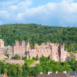 Castle Heidelberger Schloss in Germany — Stock Photo #28933343