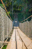 Suspension bridge — Stockfoto