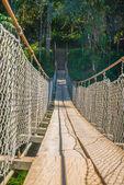 悬索桥 — 图库照片