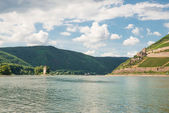 View of the river Rhine, near Mainz, Germany — Stock Photo