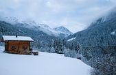 Winter — Stok fotoğraf