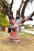 Tree to fashion — Stock Photo