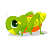 Locusts — Stock Vector