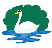 Swan — Stock Vector