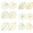 Stock Vector: Hand drawn leaves set