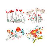 Set of botanical graphic elements — Stok Vektör