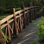 Chinese architecture, lakeside Landscape Bridge — Stock Photo #29407987