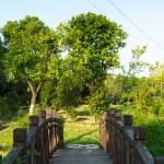 Chinese architecture, lakeside Landscape Bridge — Stock Photo #29407991