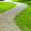 Stock Photo: The winding path