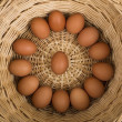 图库照片: Nest of fresh eggs