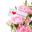 图库照片: Pink carnations and mother's Day gift, greeting cards.