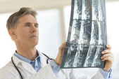 Doctor Analyzing X-Ray Report In Clinic — Stockfoto