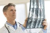 医師の診療所のレントゲン検査報告書を分析します。 — ストック写真