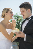 Bride Feeding Wedding Cake To Groom — Stock Photo