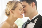 Romantic Groom About To Kiss Bride — Stock Photo