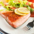 Grilled Salmon Fillet Served with Tomato and Romaine Salad — Stock Photo #28938557