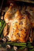 Whole Roasted Free Range Chicken — Stock Photo